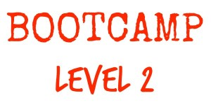 Bootcamp Level 2orange